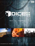 DICE Electronics Interface Guide