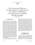 Two-Dimensional Difference Gel Electrophoresis - PPKE-ITK