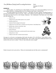 Two Old Women Study Guide - Alaska Native Knowledge Network