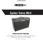 Spider Valve Advanced Guide