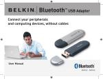 Bluetooth™ USB Adapter