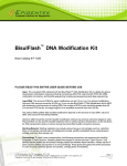BisulFlash ™ DNA Modification Kit