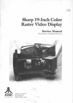 Sharp 19-Inch Color Raster Video Display