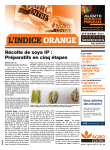 Orange - Journal Septembre 2014