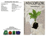 Catalogue Mycoflor 2015 pdf