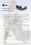 LG Projector RD-JT41 User's Manual