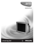 Philips 20PT 91S CRT Television User Manual