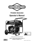 Briggs & Stratton 316916GS Specifications